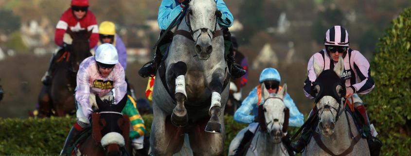 Cheltenham Festival Races