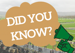 Cheltenham Festival Fun Facts