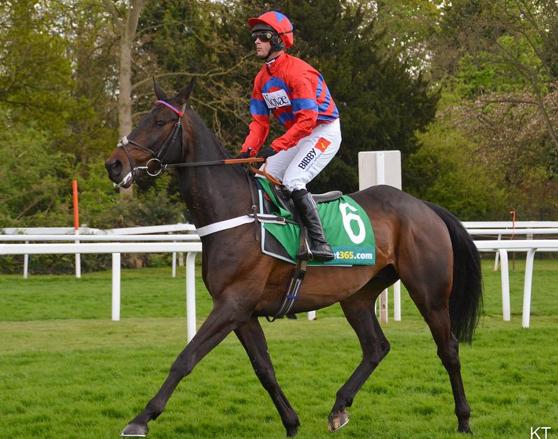 Sprinter Sacre and jockey, Nico de Boinville