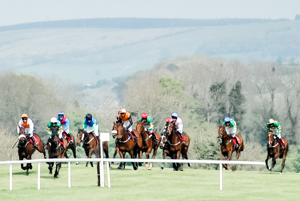 horse racing at punchestown festival