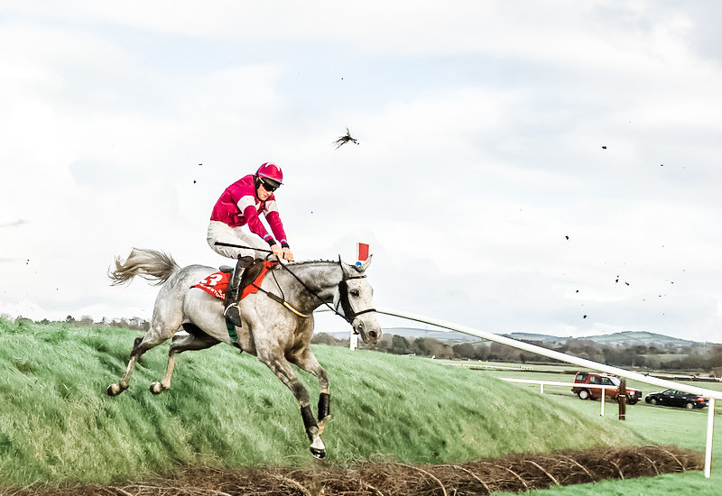 Horse and Jockey at Punchestown Festival