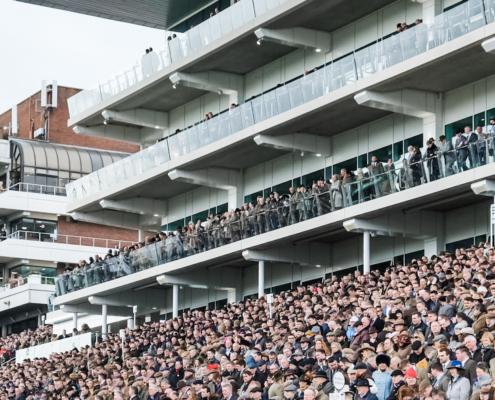 race crowds at cheltenham racecourse
