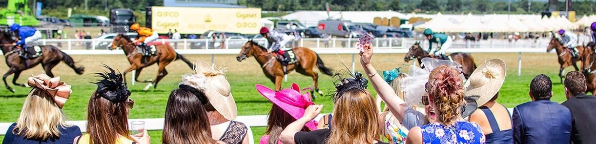 Ascot Race