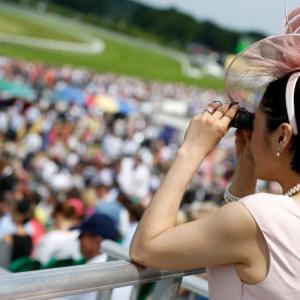 Ascot Box - Lady watching the race