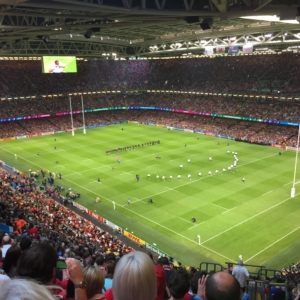 Millennium Stadium - Pitch view