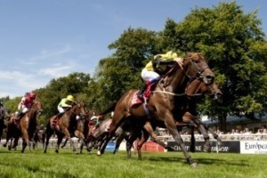 Horse running down the straight