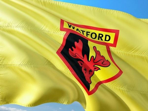 Watford Football Flag
